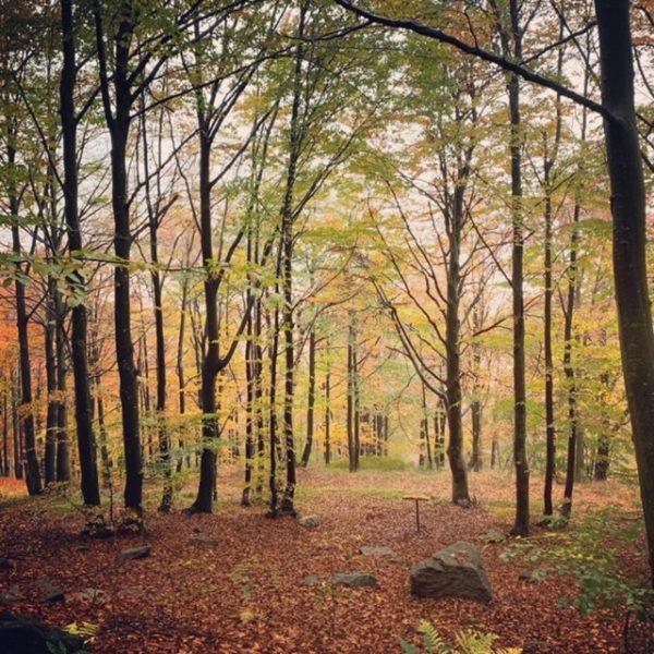 Un weekend con Madre Natura